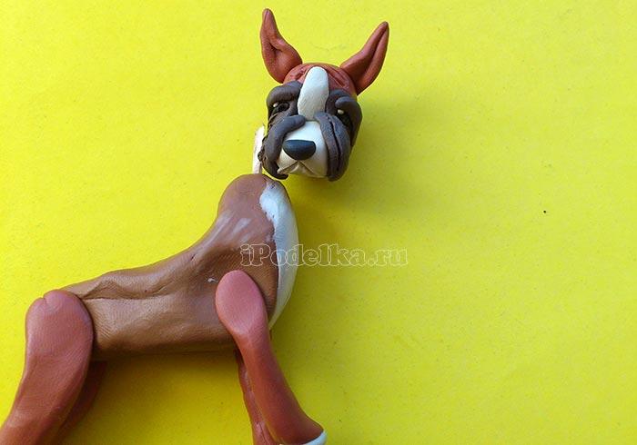Как слепить собаку боксера из пластилина