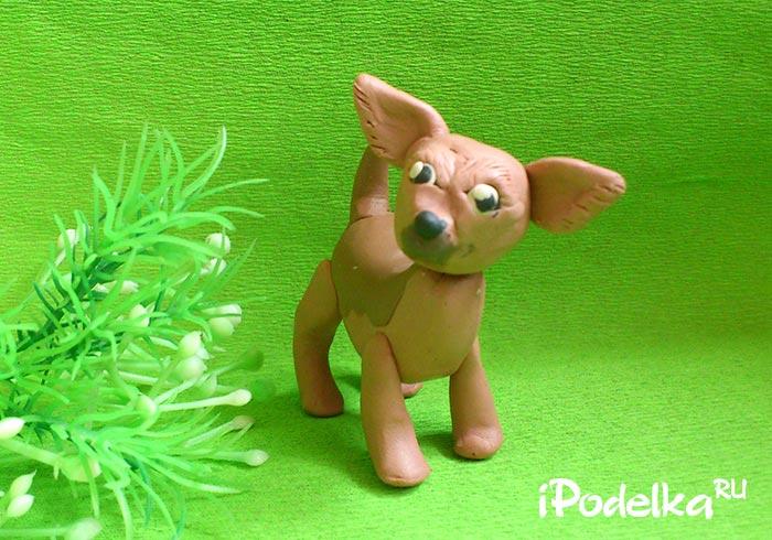 Как слепить собачку чихуахуа из пластилина