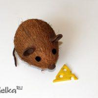 Как сделать мышку из кокоса